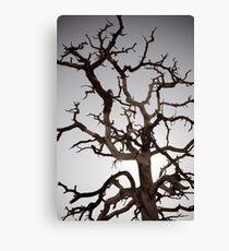 Tree of Gondor Canvas Print