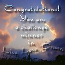 challenge winner live, love, dream by vigor