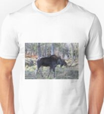 Male moose in the woods T-Shirt