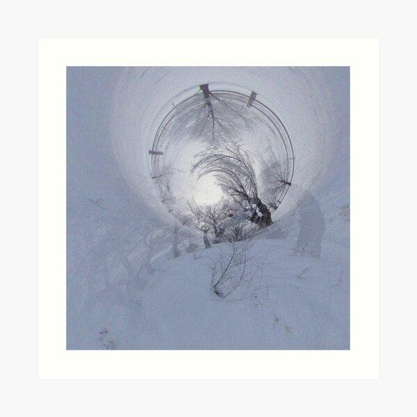 When Trees Dream in Winter Art Print