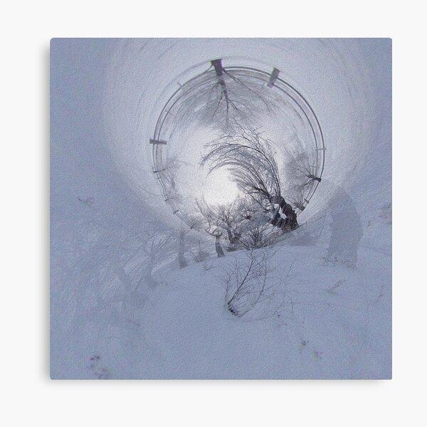When Trees Dream in Winter Canvas Print