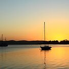 Sandy Bay Sunrise by phillip wise