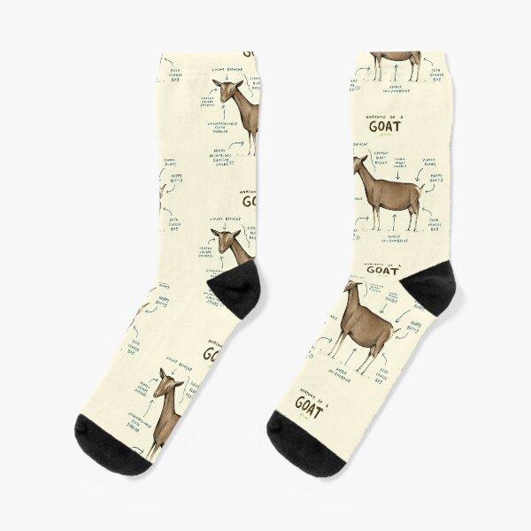 Anatomy of a Goat Socks