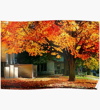 Autumn at the Library Poster