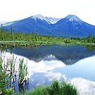 Vermillion Lakes Reflection by hummingbirds