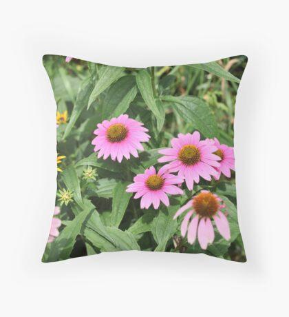 Echinacea 8679 Throw Pillow