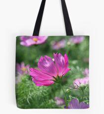 Cosmos Flower 7142 Tote Bag