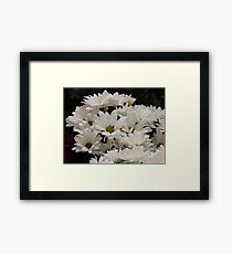 Daisy Flowers 7083 Framed Print