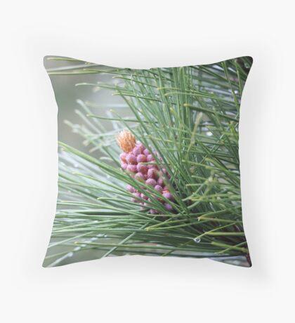 Pine Cone 3075 Throw Pillow