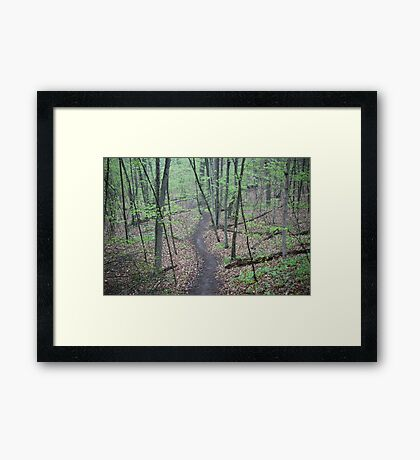 Ravine Trail 3307 Framed Print