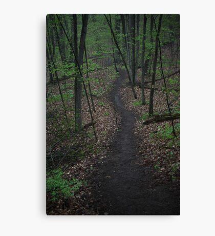 Ravine Trail 3310 Canvas Print