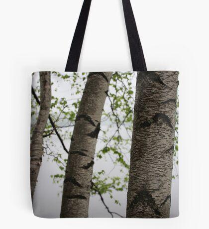 One Two Three Birch Tree 3238 Tote Bag