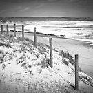 Back Beach by Christine Wilson
