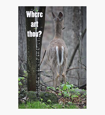 Where art thou? Photographic Print