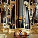 Sydney Town Hall pipe organ by Jenny Setchell
