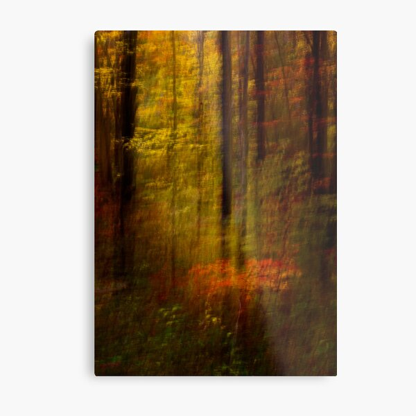 Rising Young Star Metal Print