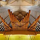 Organ pipes in Ulm Munster, Germany by Jenny Setchell