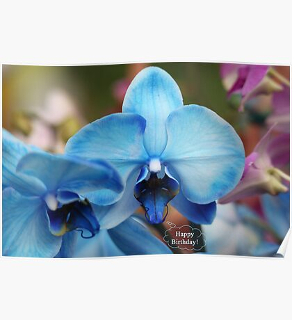 Happy Birthday Greeting Card 7053 Poster