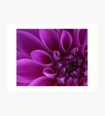 Flower macro Art Print
