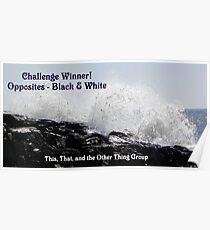 Challenge Winner - Opposites  Black & white Poster