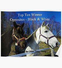 Top Ten - Opposites Black & White Poster