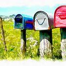 Mail boxes near New Plymouth, Taranaki by Jenny Setchell