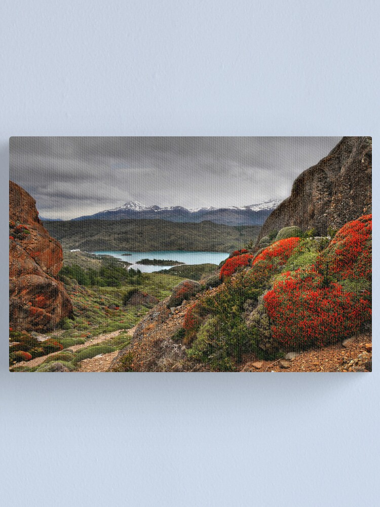 Alternate view of Flame Bushes, Laguna and Mountains Canvas Print