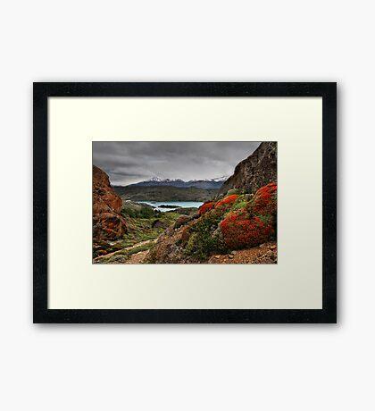 Flame Bushes, Laguna and Mountains Framed Print