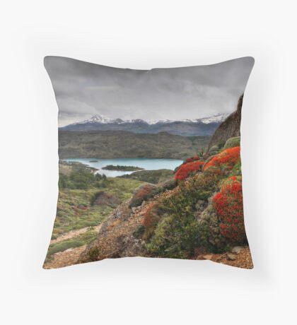 Flame Bushes, Laguna and Mountains Throw Pillow