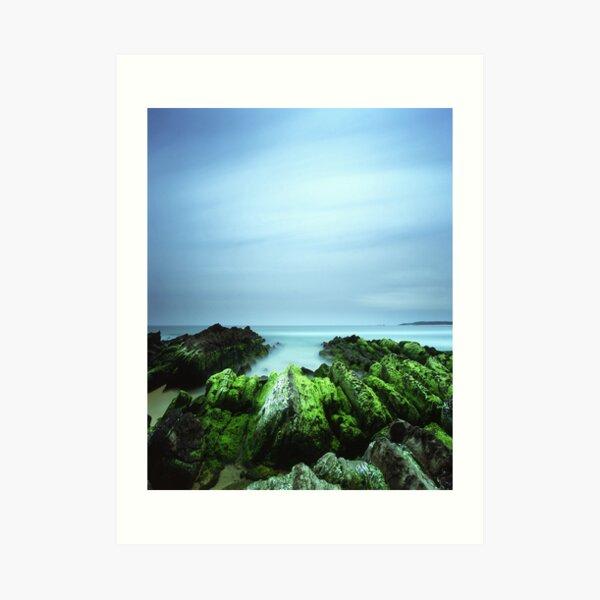 """Beachular Mosstrophy"" ∞ Barragga Bay, NSW - Australia Art Print"