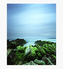 """Beachular Mosstrophy"" ∞ Barragga Bay, NSW - Australia Photographic Print"