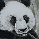 Panda - tinted charcoal by gogston