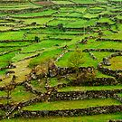 Patchwork fields, Peneda-Geres, Portugal by Andrew Jones