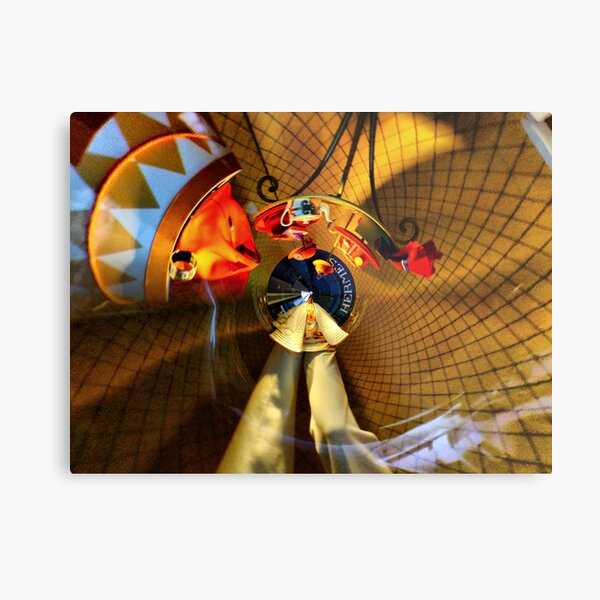 theca of momentary epiphany 27 Metal Print