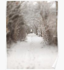 Enchanted winter  Poster