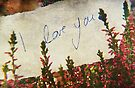 I Love You (Memories) by Denise Abé