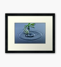 Little Flowers and a Droplet Framed Print