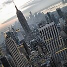 A New Year In NYC by joan warburton