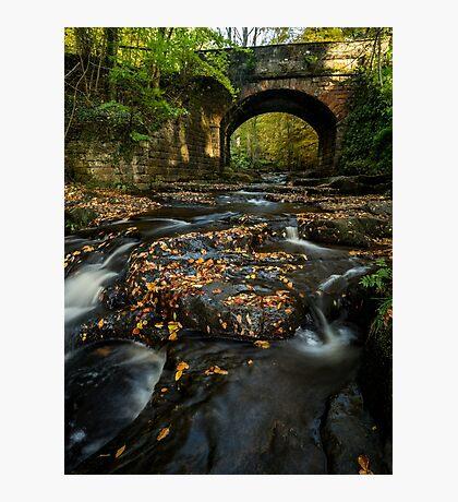 Maybeck Bridge Photographic Print