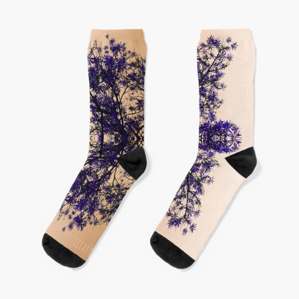 Fractal Calcetines