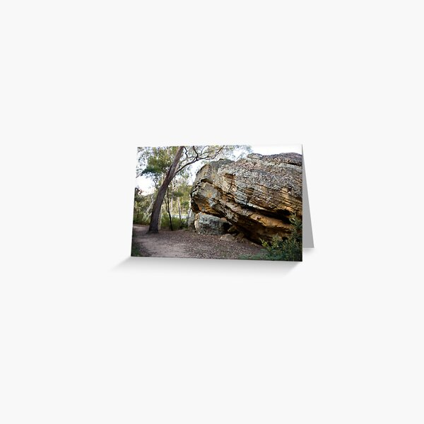 Dunn's Swamp - Wollemi National Park III Greeting Card
