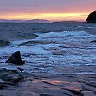 Dawn of 2012 Mayne Island  by TerrillWelch