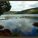 Lough Dan by dOlier