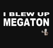 Fallout: I blew up megaton