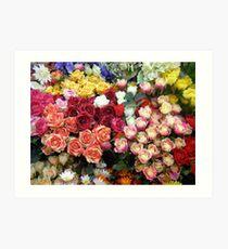Colourful Display Art Print