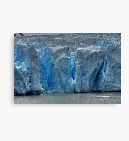 The Face of Grey Glacier Canvas Print