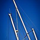 Mr Blue Sky by Chris Cardwell