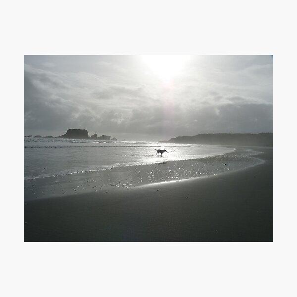 Hazy seaside Photographic Print