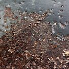 Icy Autumn by teresalynwillis