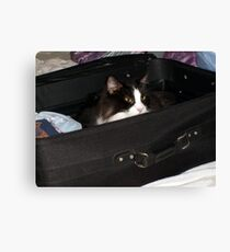 If I hide in here, maybe I can sneak on the vacation with you.... Canvas Print
